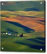 Palouse - Washington - Farms - 1 Acrylic Print by Nikolyn McDonald