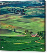Palouse - Washington - Farms - 4 Acrylic Print