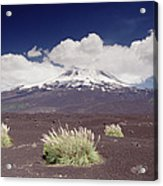 Pampas Grass And Old Lava Flow Llaima Acrylic Print
