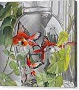Panes Acrylic Print