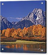Panorama Fall Morning Oxbow Bend Grand Tetons National Park Wyoming Acrylic Print