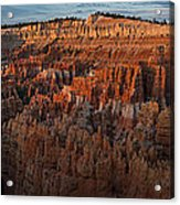 Panorama Of Bryce Canyon Amphitheater Acrylic Print
