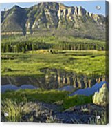 Panorama Of Windy Mountain Wyoming Acrylic Print