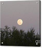 Panoramic New Orleans Moon Rising Acrylic Print