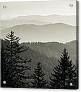 Panoramic View Of Trees With A Mountain Acrylic Print