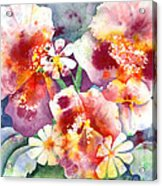Pansies And Daisies Acrylic Print by Kathleen McGee