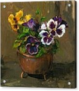 Pansies In Copper Pot Acrylic Print