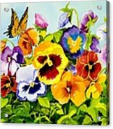 Pansies With Butterfly Acrylic Print by Janis Grau