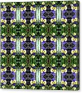 Pansy Floral Pattern Acrylic Print