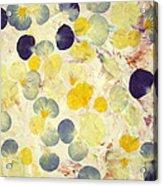 Pansy Petals Acrylic Print by James W Johnson