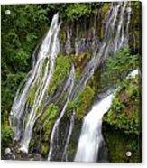 Panther Creek Falls 2- Washington Acrylic Print