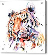 Panthera Tiger II Acrylic Print
