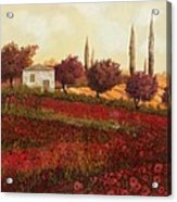 Papaveri In Toscana Acrylic Print by Guido Borelli