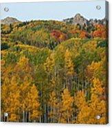 Paradise Autumn Acrylic Print