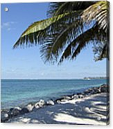 Paradise - Key West Florida Acrylic Print