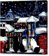 Paris Cats Acrylic Print
