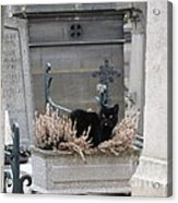 Paris Cemetery Cat - Le Chats Noir - Pere Lachaise - Black Cat On Grave Cemetery Art Acrylic Print by Kathy Fornal