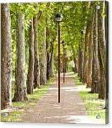 Park Footpath Acrylic Print