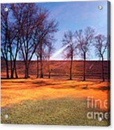 Park In Mcgill Near Ely Nv In The Evening Hours Acrylic Print