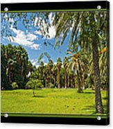 Park Open Area Acrylic Print