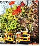 Parked School Buses Acrylic Print