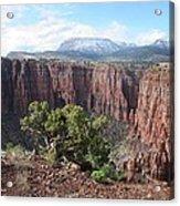 Parker Canyon In The Sierra Ancha Arizona Acrylic Print