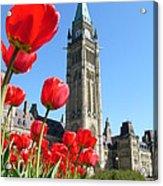 Parliament Hill, Ottawa Acrylic Print