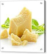 Parmesan Cheese Acrylic Print