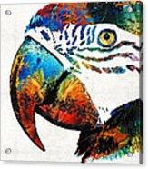 Parrot Head Art By Sharon Cummings Acrylic Print