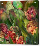Parrot In Parrot Tulips Acrylic Print