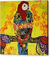 Parrot Oshun Acrylic Print