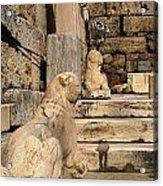 Parthenon 6 Acrylic Print