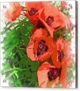 Partial To Poppies Acrylic Print