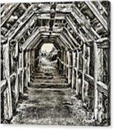 Partington Cove Tunnel By Diana Sainz Acrylic Print
