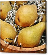 Party Pears Acrylic Print by Andee Design