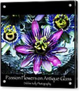 Passion Flower Poster Acrylic Print