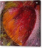 Passion Heart Acrylic Print