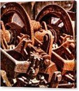 Past Its Prime Acrylic Print