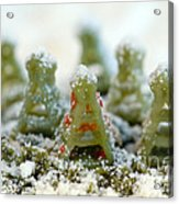 Pasta Christmas Trees Acrylic Print