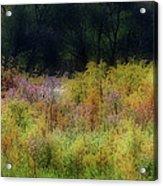 Pastel Field Acrylic Print