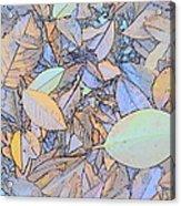 Pastel Leaves Acrylic Print