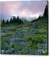 Pastel Mountain Dawn Acrylic Print