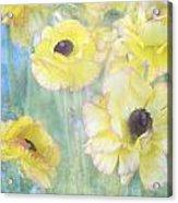 Pastel Perfection Acrylic Print