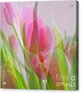 Pastel Petals Acrylic Print
