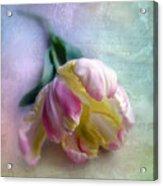 Pastel Poem Acrylic Print
