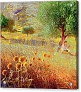 Pastelero Spain Acrylic Print