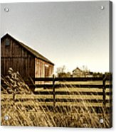 Pasture Acrylic Print by Margie Hurwich