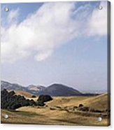 Pastures Of Heaven Acrylic Print by Elery Oxford