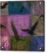 Patched Quilt Acrylic Print
