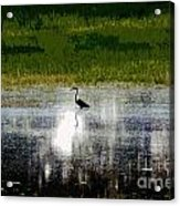 Patches Of Pretty Acrylic Print
